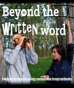 cropped-beyond-the-written-word_workshop-banner_v12_website