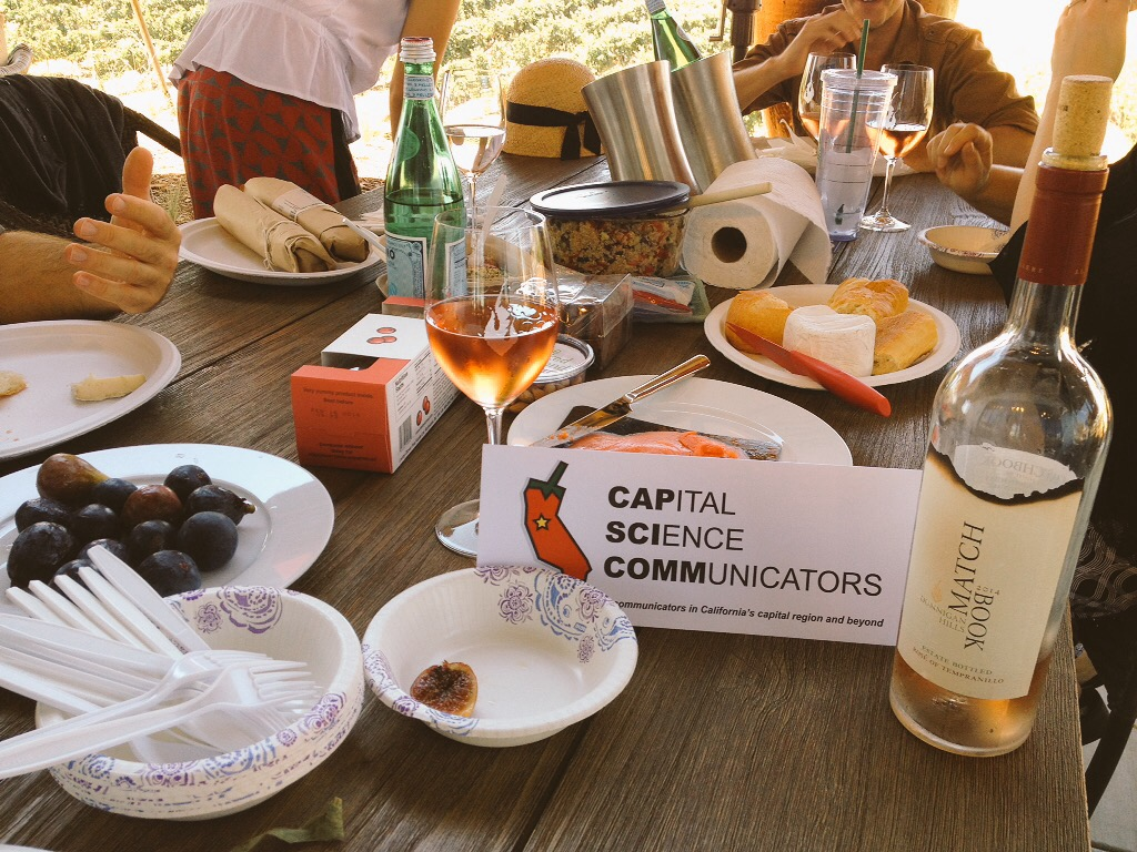 A picnic scene from the August 2015 CapSciComm Freelancers Meetup
