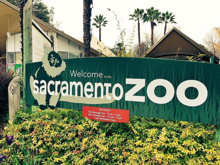 Sacramento Zoo.JPG